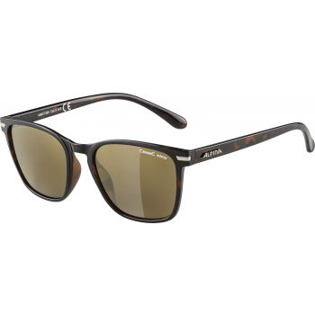 Alpina YEFE, sončna očala, rjava