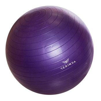 Terinda BALA, gimnastična žoga, vijolična