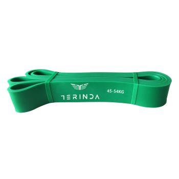Terinda POWER, fitnes trak, zelena