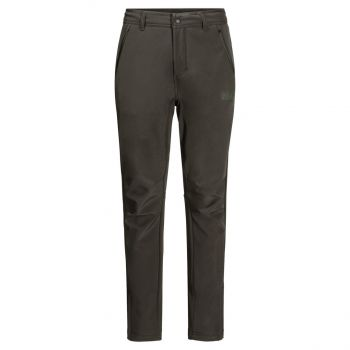 Jack Wolfskin ZENON SOFTSHELL, moške pohodne hlače, zelena