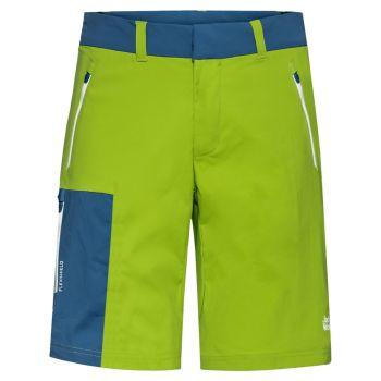 Jack Wolfskin OVERLAND SHORTS M, hlače, zelena