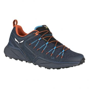 Salewa DROPLINE GTX, moški trail tekaški copati, modra