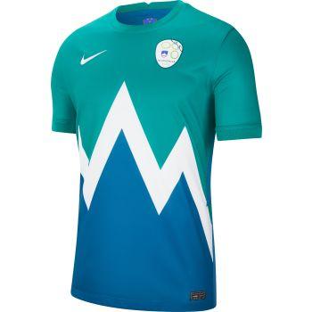 Nike SVN M NK BRT STAD JSY SS AW, moški nogometni dres, zelena