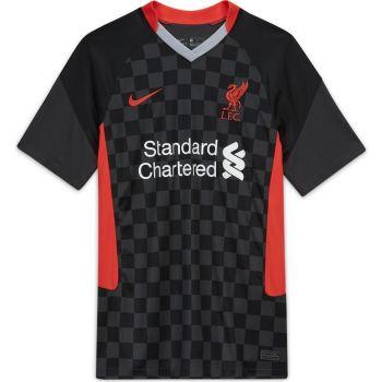 Nike LFC M NK BRT STAD JSY SS 3R, moški nogometni dres, siva