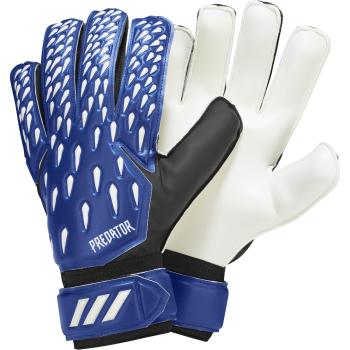 adidas PRED GL TRN, moške nogometne rokavice, modra