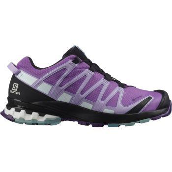 Salomon XA PRO 3D V8 GTX W, ženski trail tekaški copati, vijolična