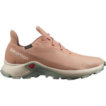 Salomon ALPHACROSS 3 GTX W, ženski trail tekaški copati