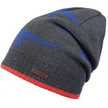 Barts THORN BEANIE DARK HEATHER 53- 55, otroška kapa, večbarvno